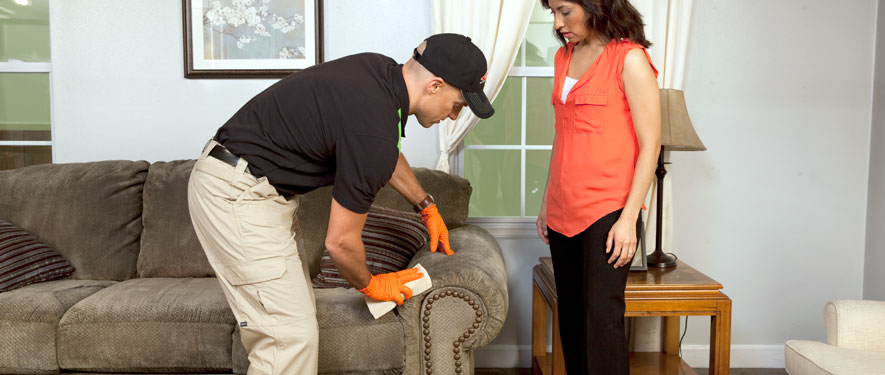 Reston, VA carpet upholstery cleaning