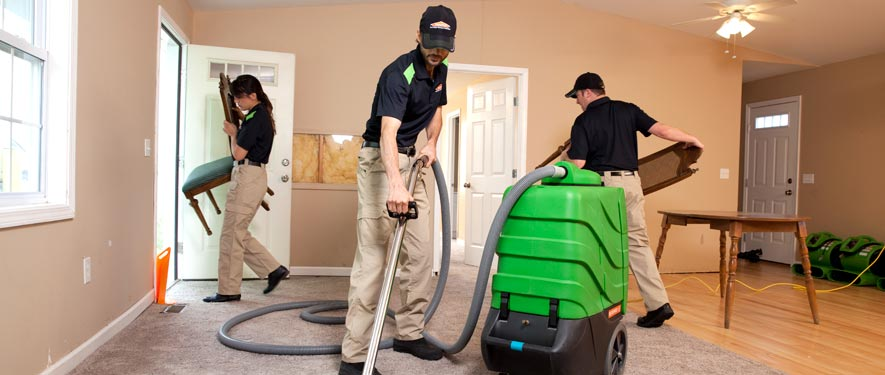 Reston, VA cleaning services